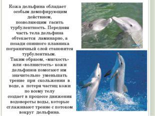 Кожа дельфина обладает особым демпфирующим действием, позволяющим гасить ту