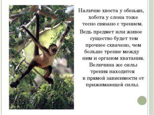 Наличие хвоста у обезьян, хобота услона тоже тесно связано с трением. Ведь п