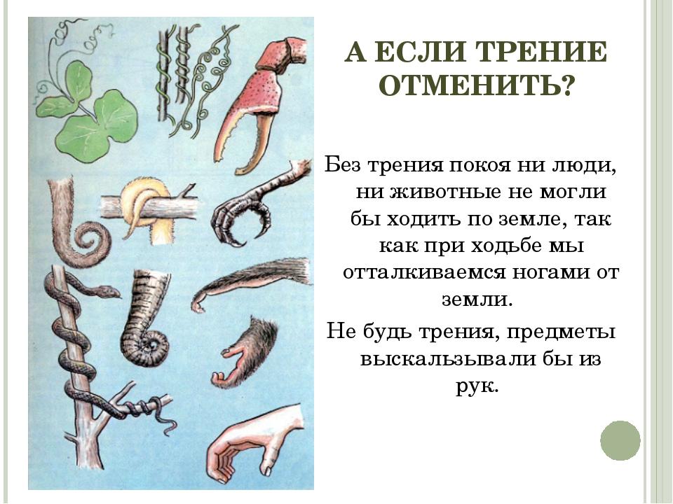 А ЕСЛИ ТРЕНИЕ ОТМЕНИТЬ? Без трения покоя ни люди, ни животные не могли бы ход...