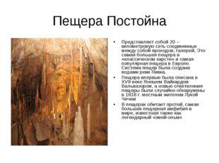 Пещера Постойна Представляет собой 20 – километровую сеть соединенных между с