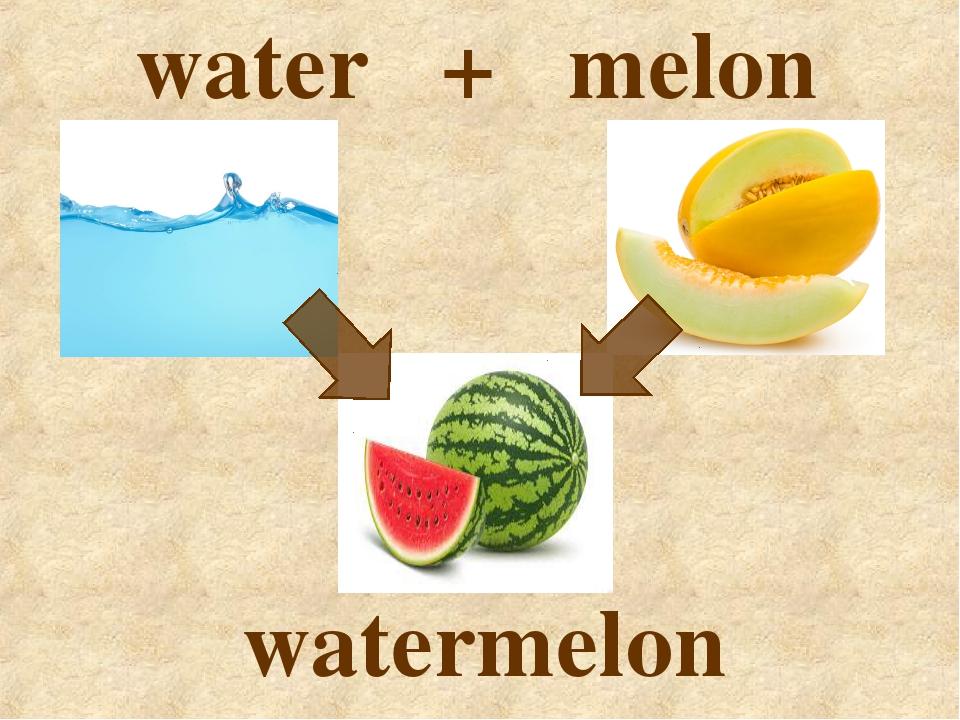 water + melon watermelon