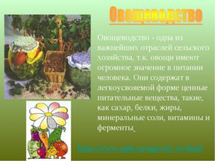 Овощеводство - одна из важнейших отраслей сельского хозяйства, т.к. овощи име