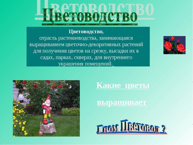 Цветоводство, отрасль растениеводства, занимающаяся выращиванием цветочно-дек...
