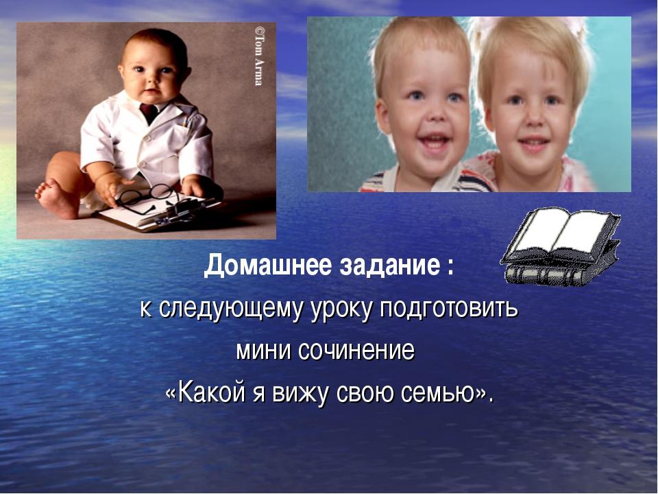 Домашнее задание : к следующему уроку подготовить мини сочинение «Какой я виж...