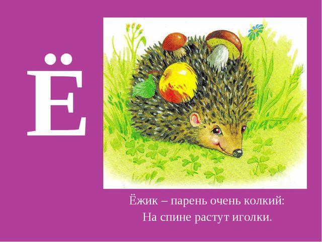 Ё Ёжик – парень очень колкий: На спине растут иголки.