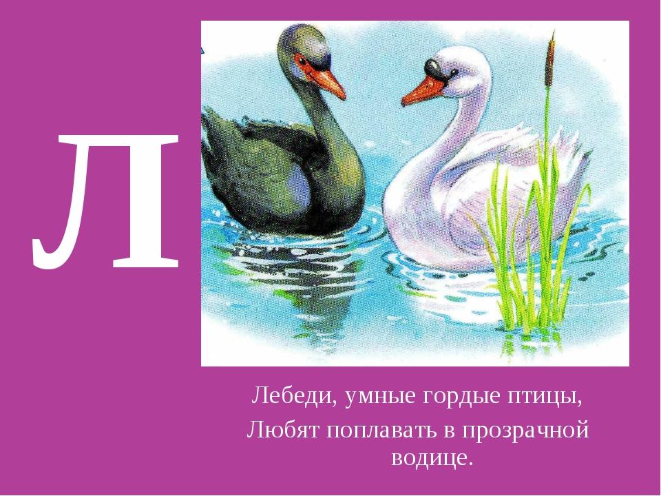 Л Лебеди, умные гордые птицы, Любят поплавать в прозрачной водице.