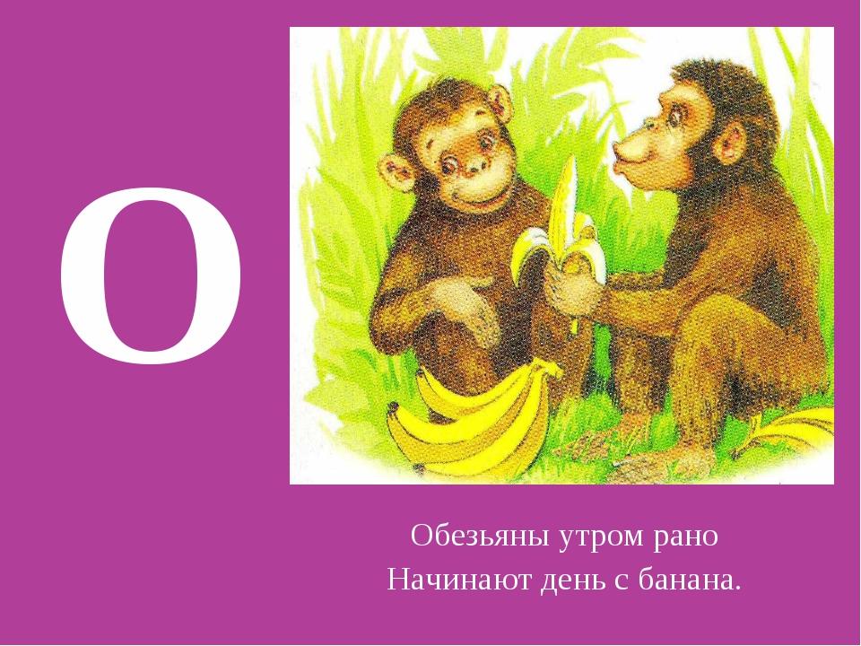 О Обезьяны утром рано Начинают день с банана.