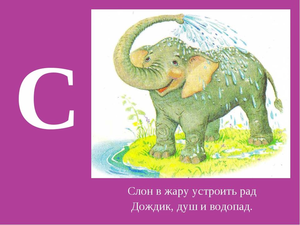 С Слон в жару устроить рад Дождик, душ и водопад.