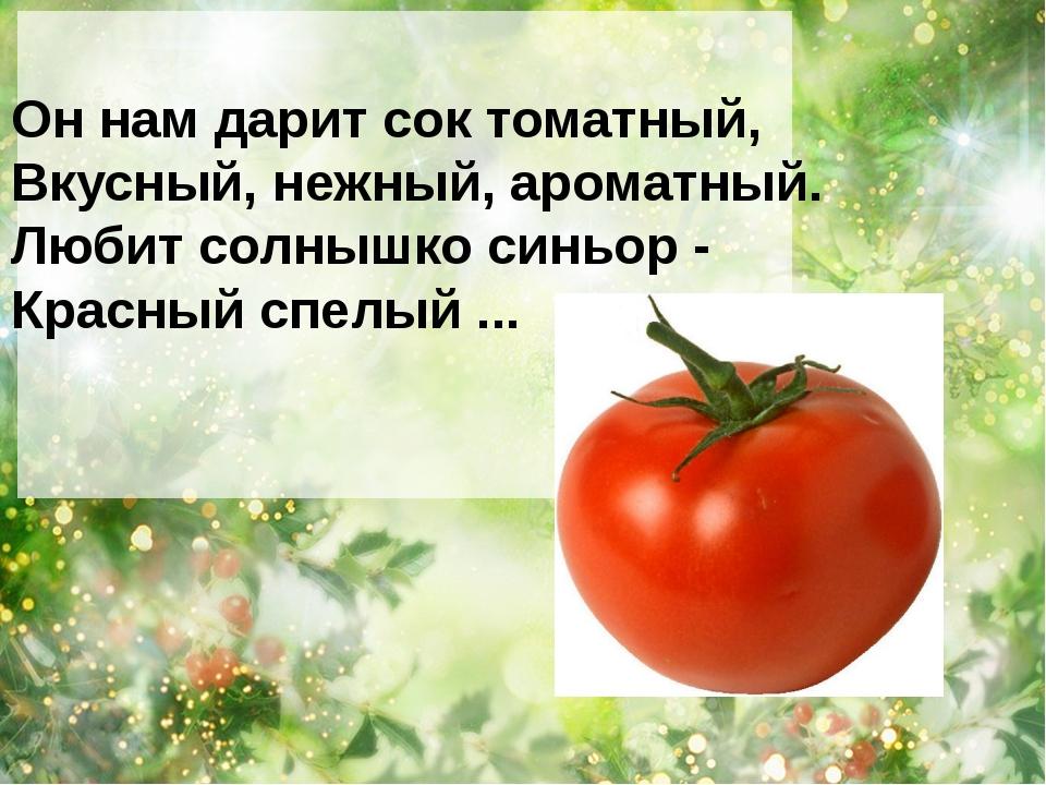 Он нам дарит сок томатный, Вкусный, нежный, ароматный. Любит солнышко синьор...
