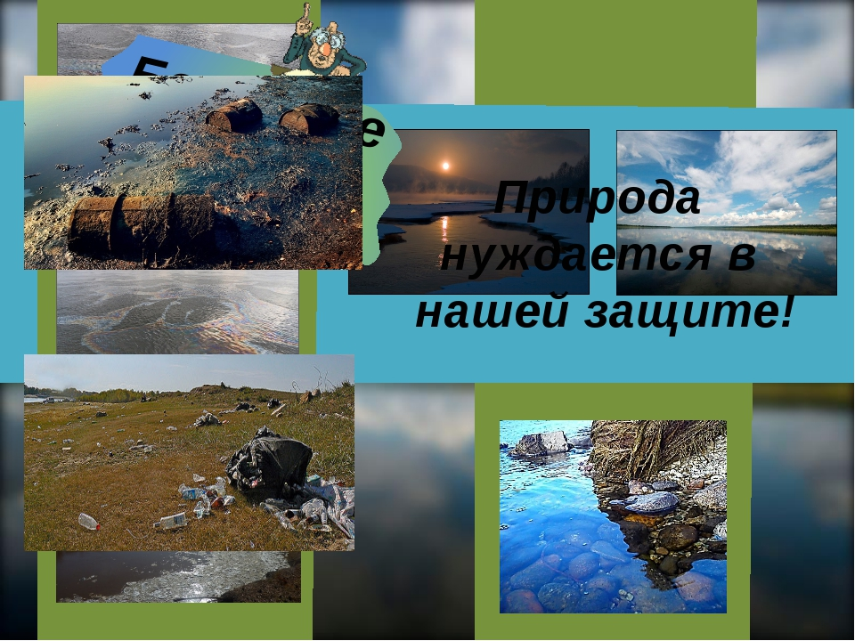 Берегите природу! Берегите природу! Природа нуждается в нашей защите!
