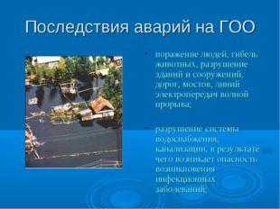 Последствия аварий на ГОО поражение людей, гибель животных, разрушение зданий
