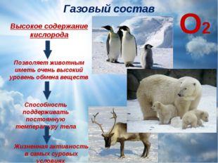Газовый состав Высокое содержание кислорода Позволяет животным иметь очень вы