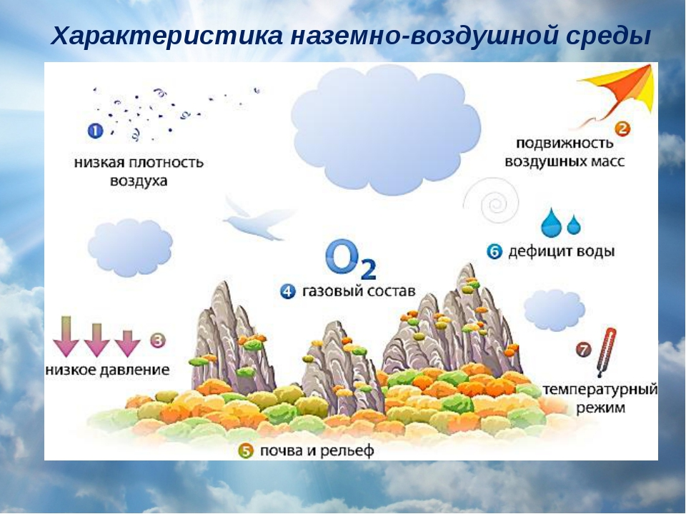 Характеристика наземно-воздушной среды