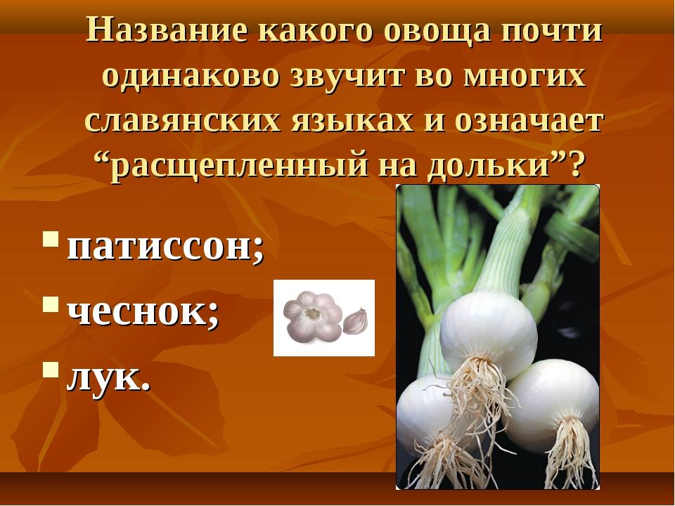 Название какого овоща почти одинаково звучит во многих славянских языках и оз...