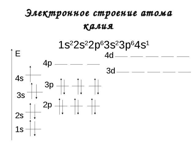 Электронное строение атома калия 1s22s22р63s23р64s1 1s E 2s 2р 3s 3р 3d 4s 4р...