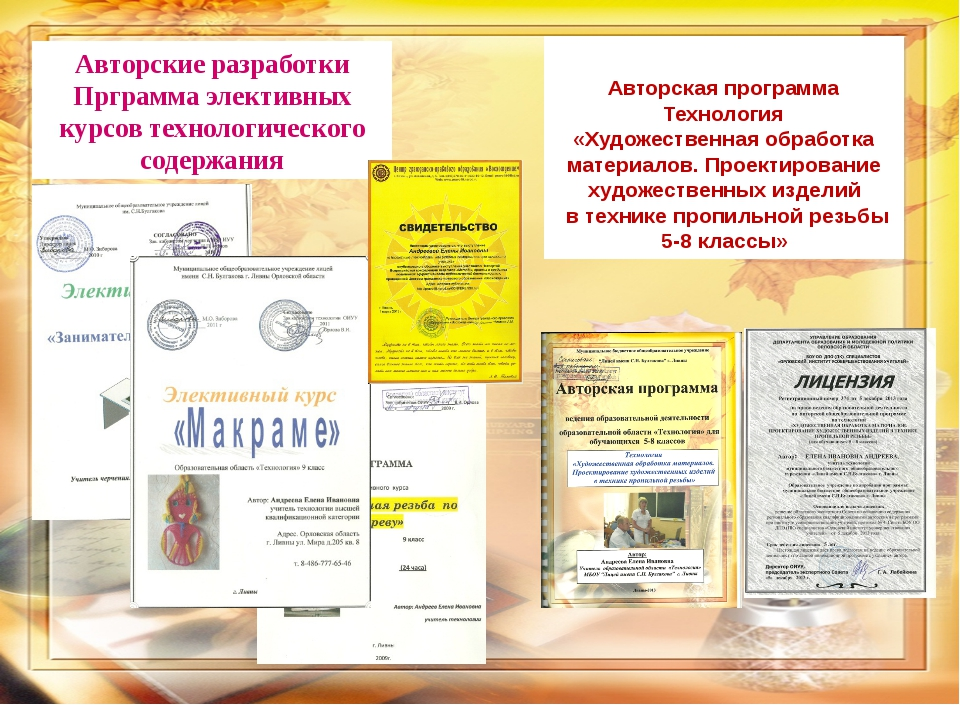Авторские разработки Прграмма элективных курсов технологического содержания А...