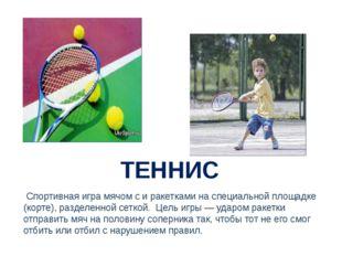 ТЕННИС Спортивная игра мячом с и ракетками на специальной площадке (корте),
