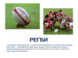 РЕГБИ Спортивная командная игра с мячом овальной формы на специальной площад