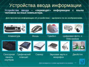 * Устройства ввода информации Клавиатура Мышь Трекбол Сенсорная панель ноутбу