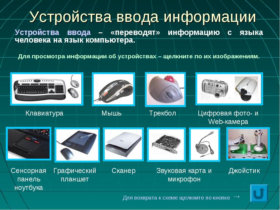 * Устройства ввода информации Клавиатура Мышь Трекбол Сенсорная панель ноутбу...
