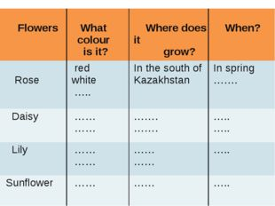Flowers What colour is it? Wheredoes it grow? When? Rose red white ….. In th