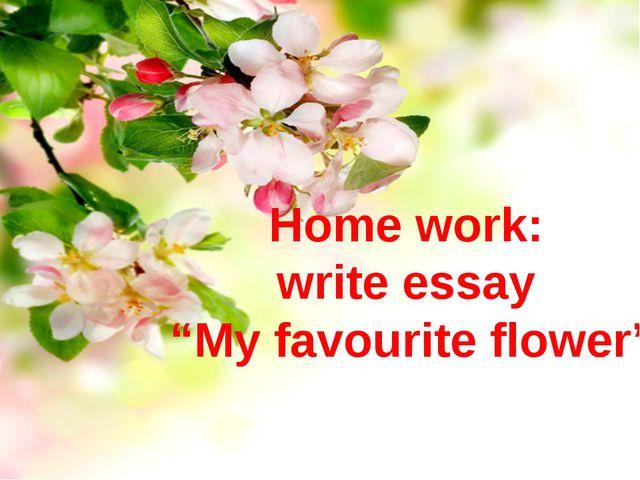 "Home work: write essay ""My favourite flower"""