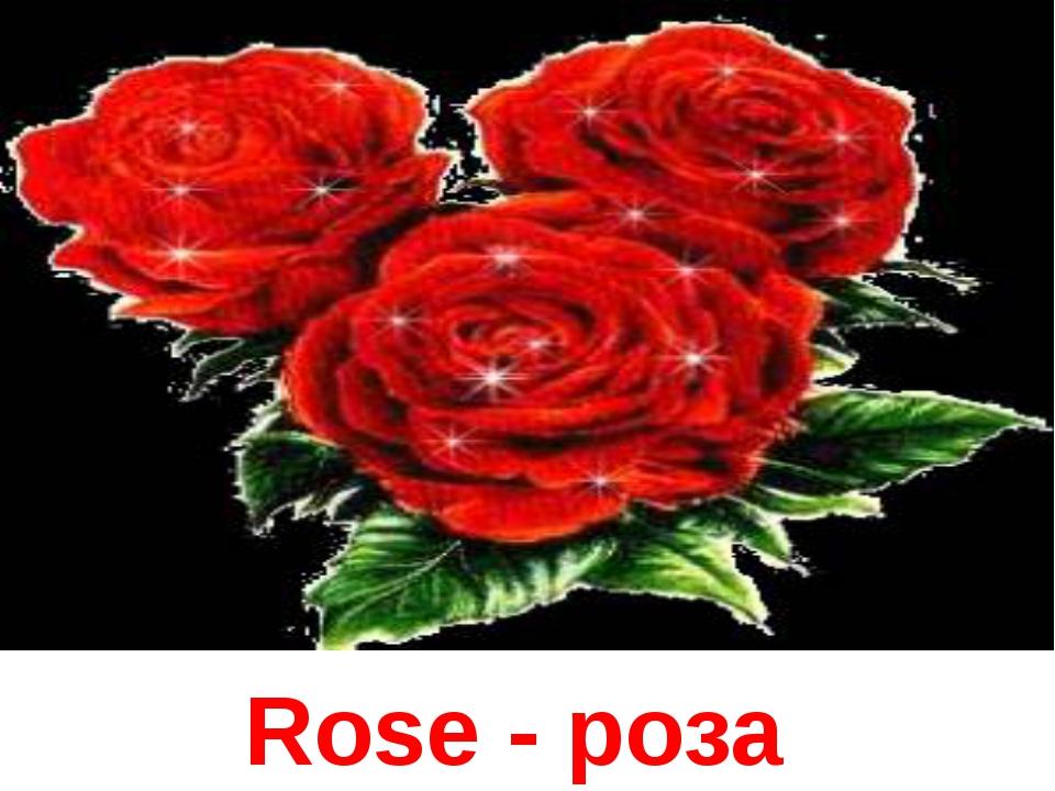 Rose - роза