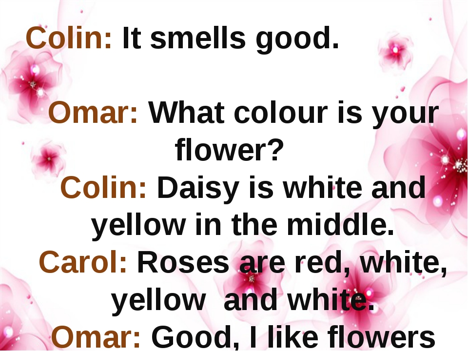 Colin: It smells good. Omar: What colour is your flower? Colin: Daisy is whi...