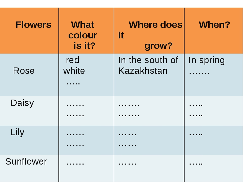 Flowers What colour is it? Wheredoes it grow? When? Rose red white ….. In th...