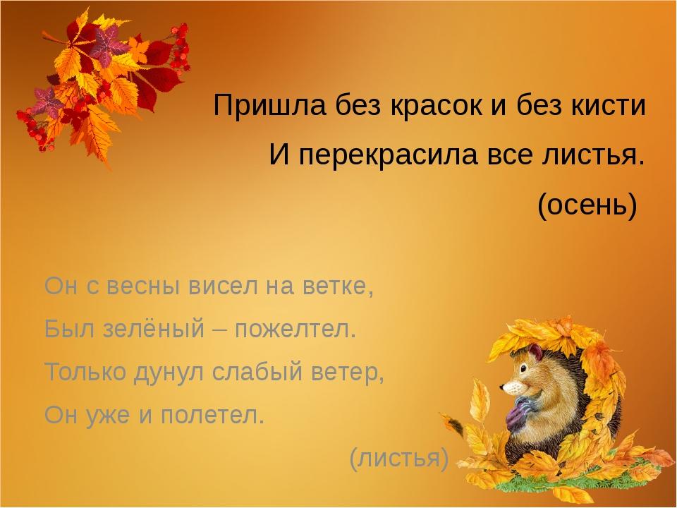 Пришла без красок и без кисти И перекрасила все листья. (осень) Он с весны ви...