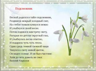 Подснежник Весной родился в тайге подснежник, Раздвинув мокрый холодный снег