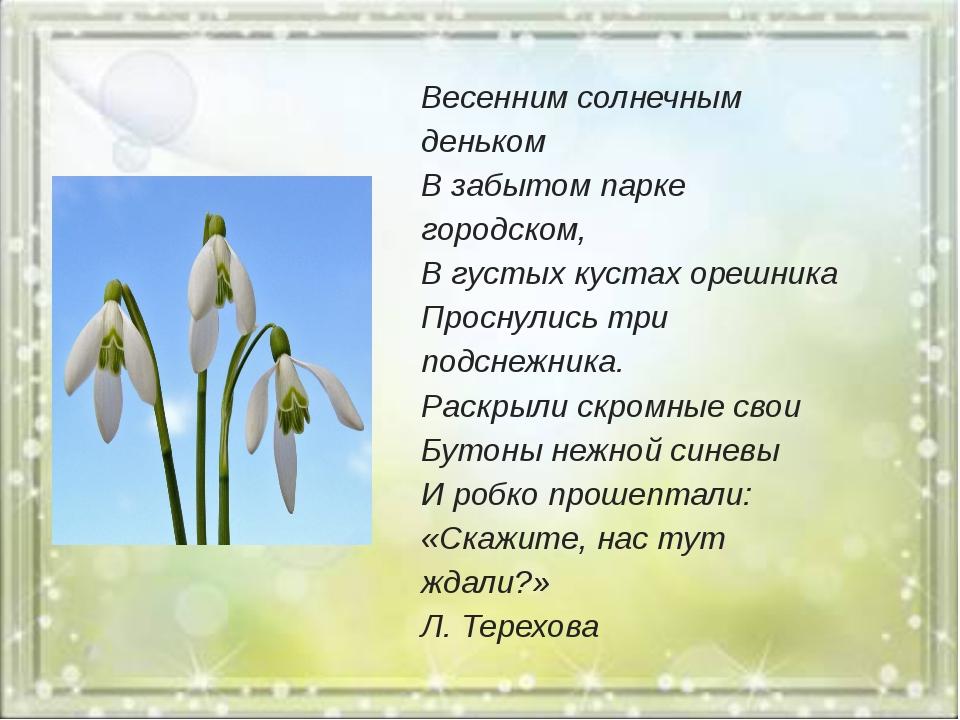 Весенним солнечным деньком В забытом парке городском, В густых кустах орешни...