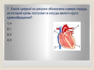 7. Какой цифрой на рисунке обозначена камера сердца, из которой кровь поступ