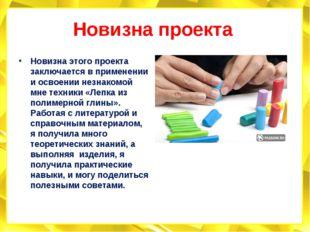 Новизна проекта Новизна этого проекта заключается в применении и освоении нез