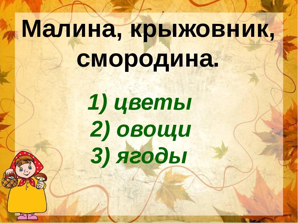 Малина, крыжовник, смородина. 1) цветы 2) овощи 3) ягоды