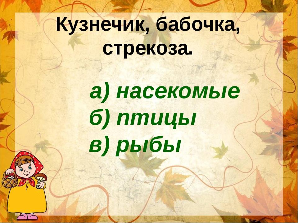 Кузнечик, бабочка, стрекоза. а) насекомые б) птицы в) рыбы