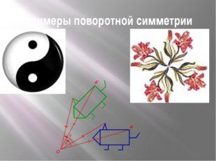 Примеры поворотной симметрии
