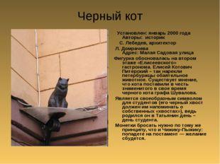 Черный кот Установлен: январь 2000 года Авторы: историк С. Лебедев, архитекто