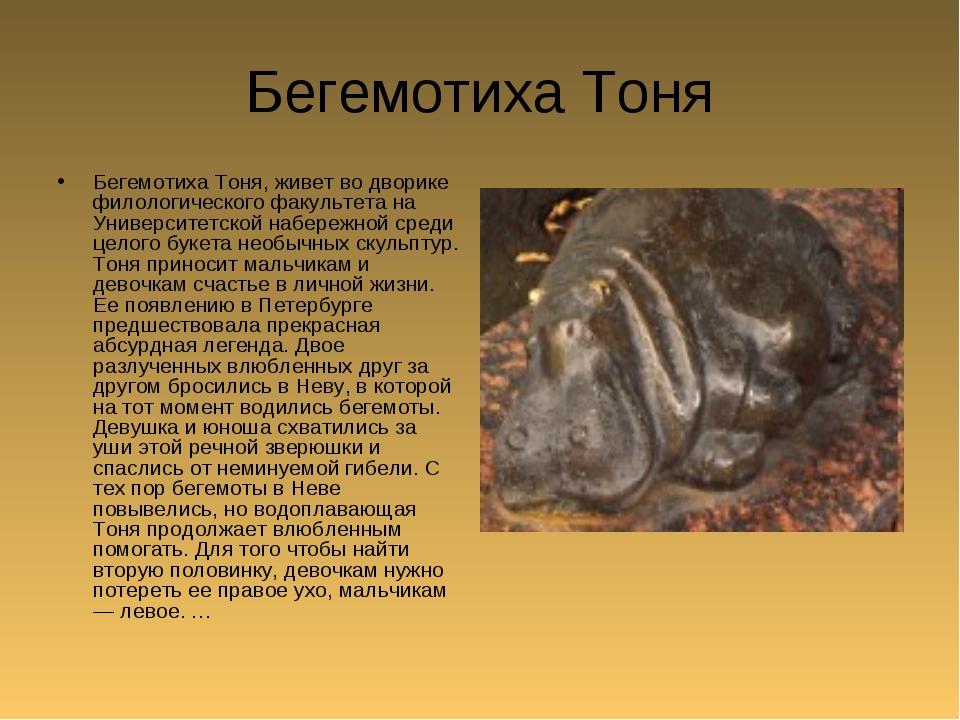 Бегемотиха Тоня Бегемотиха Тоня, живет во дворике филологического факультета...