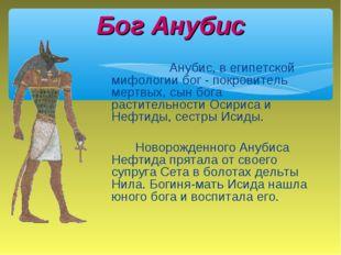Анубис, в египетской мифологии бог - покровитель мертвых, сын бога растит