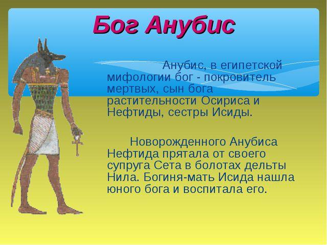 Анубис, в египетской мифологии бог - покровитель мертвых, сын бога растит...