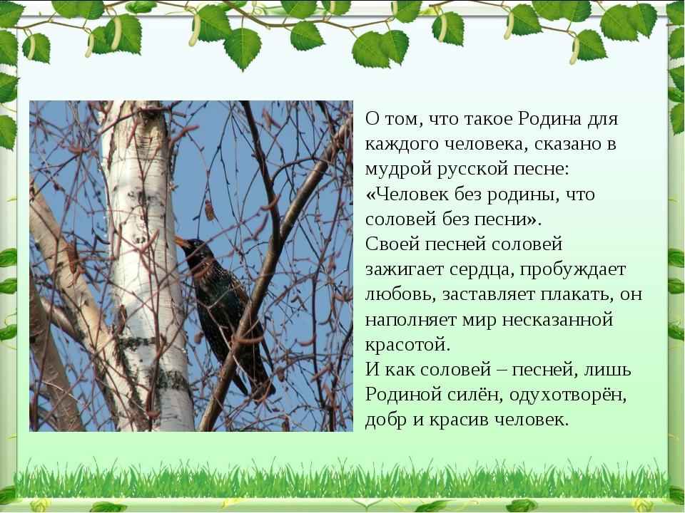 О том, что такое Родина для каждого человека, сказано в мудрой русской песне:...