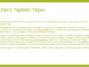 Класс тармақтары Қазіргі кезде тіршілік ететін сүтқоректілер 2 класс тармағын