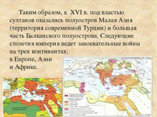 Таким образом, к XVI в. под властью султанов оказались полуостров Малая Азия