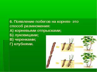 6. Появление побегов на корнях- это способ размножения: А) корневыми отпрыска
