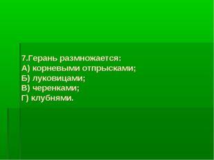 7.Герань размножается: А) корневыми отпрысками; Б) луковицами; В) черенками;