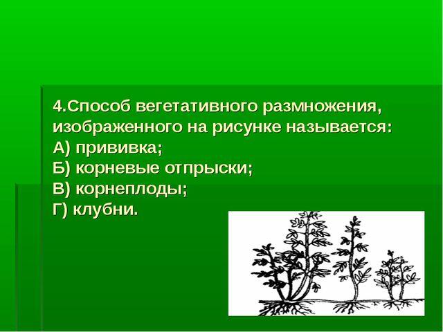 4.Способ вегетативного размножения, изображенного на рисунке называется: А) п...