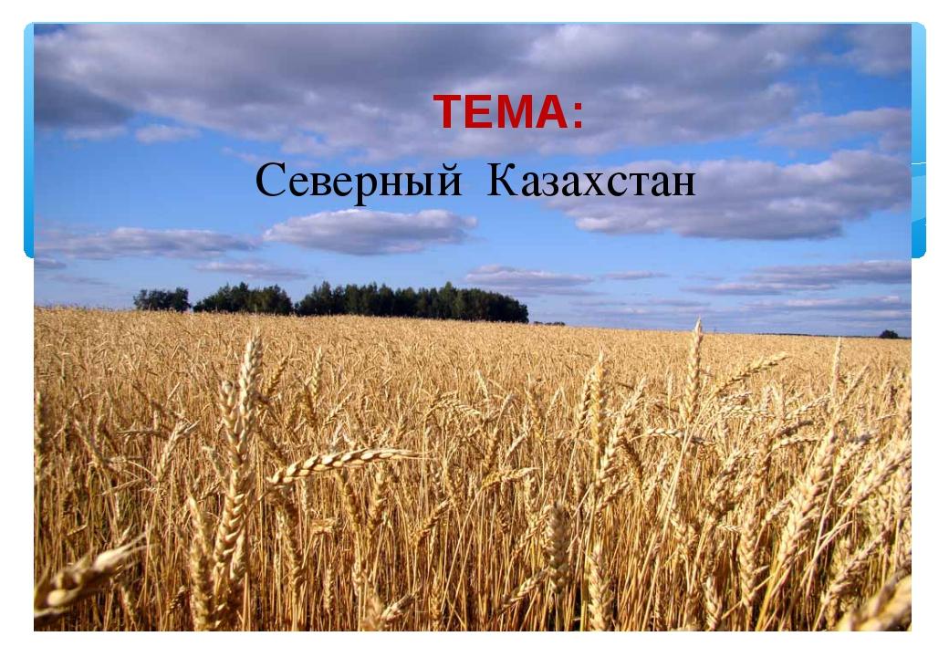 Северный Казахстан ТЕМА: