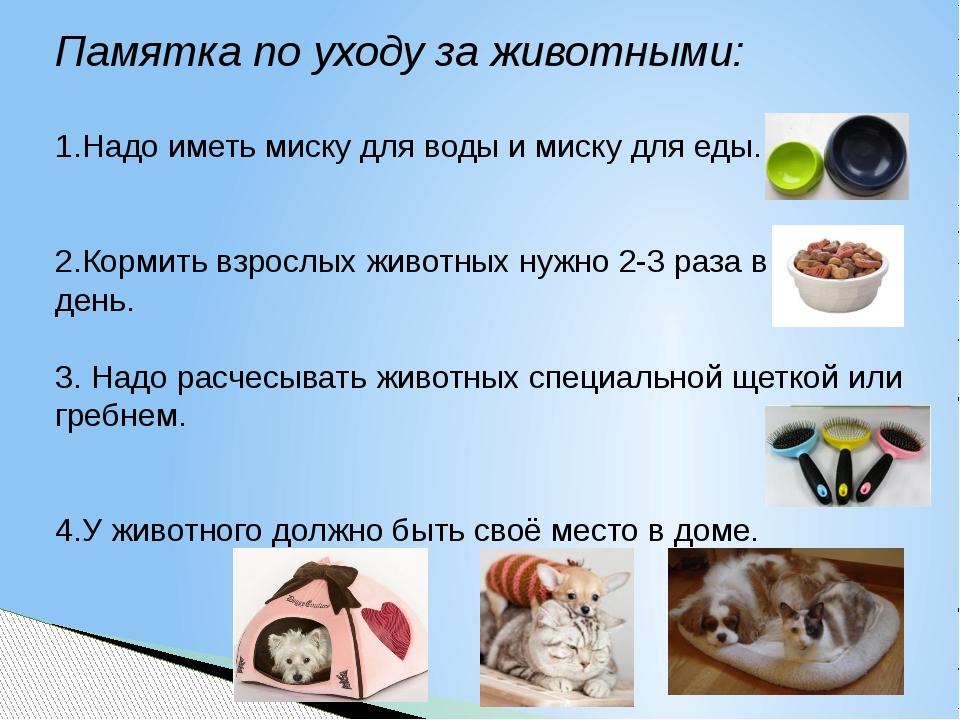 Памятка по уходу за животными: 1.Надо иметь миску для воды и миску для еды. 2...
