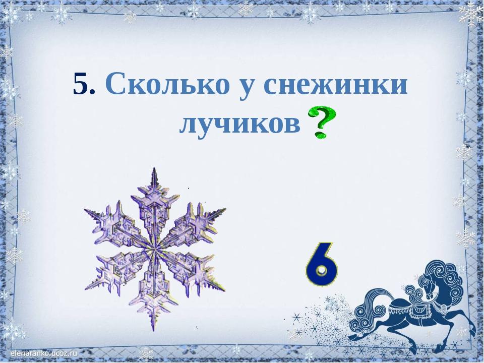 5. Сколько у снежинки лучиков